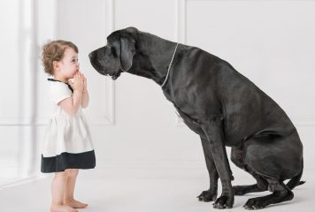 Razas de perros grandes